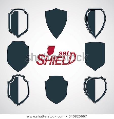 insignia · escudo · vector · arte · gráfico · ilustración - foto stock © vector1st