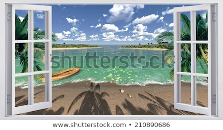A window with a view of the palm plant Stock photo © bluering