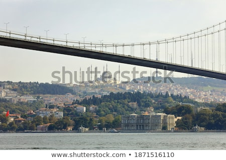 Houses on a hill over Bosphorus, Istanbul, Turkey stock photo © Xantana