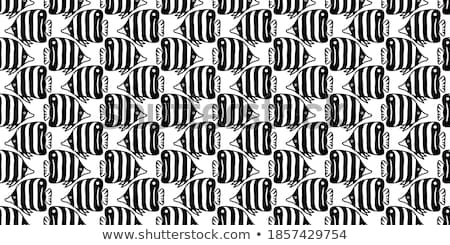 butterfly black and white seamless pattern stock photo © studioworkstock