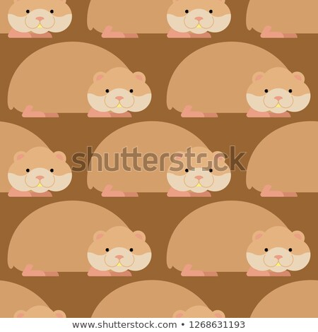 Hamster pattern. Cute pet background. Home rodent ornament Stock photo © popaukropa