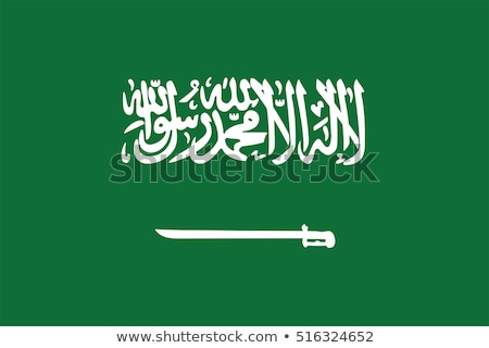 Arabia Saudita bandera blanco resumen diseno pintura Foto stock © butenkow