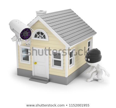 Stock photo: 3d small people - thief and house
