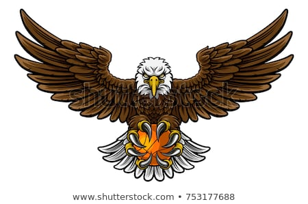 Cartoon Eagle Basketball Stock photo © cthoman