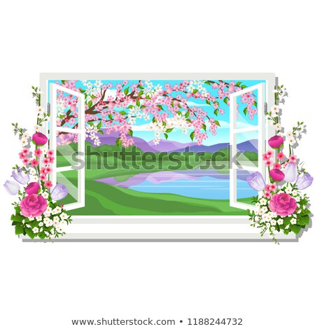 Stock photo: The wooden window overlooking the meadow of green grass and pond in spring isolated on white backgro