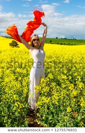 Boldog női mező arany virágok élet Stock fotó © lovleah