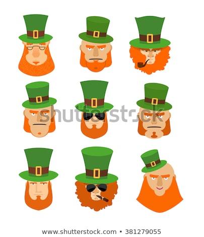 Stock fotó: Leprechaun Head Mascot