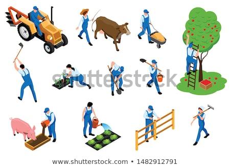 Traktör çiftçi tırmık vektör taşıma yardım Stok fotoğraf © robuart