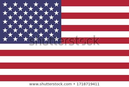 USA zászló izolált fehér nagy szett Stock fotó © butenkow