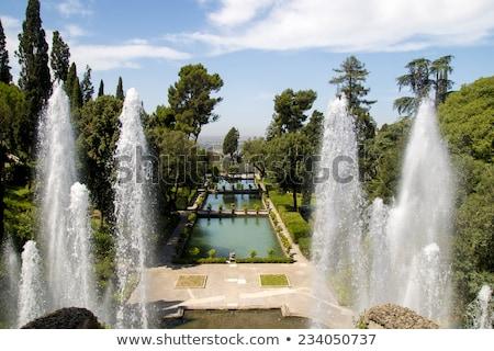 Villa İtalya detay yeşil Avrupa kültür Stok fotoğraf © boggy