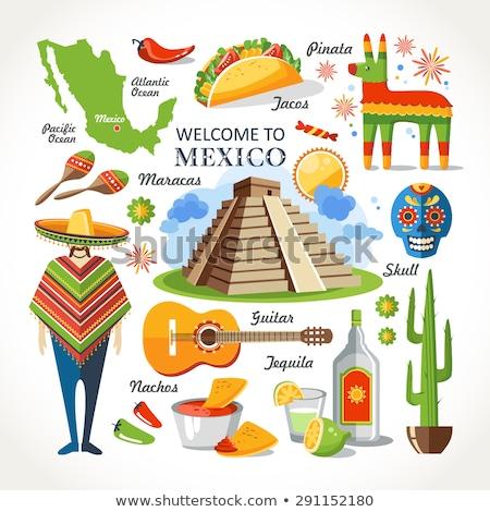 Conjunto elementos mexicano cultura bem-vindo México Foto stock © Arkadivna