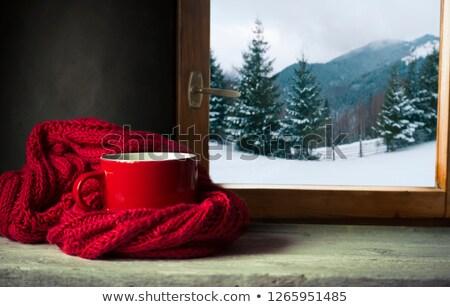 Thee koffiemok winter sjaal sneeuw seizoen Stockfoto © dolgachov