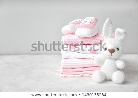 Rózsaszín ruházat szett lány háztartás takarítás Stock fotó © toyotoyo