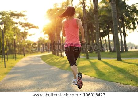 ランナー 選手 を実行して 熱帯 公園 女性 ストックフォト © galitskaya