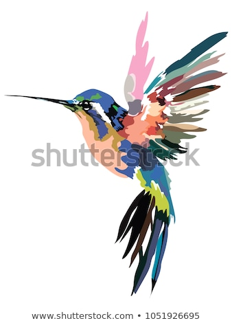 画像 口径 自然 鳥 熱帯 ストックフォト © nezezon