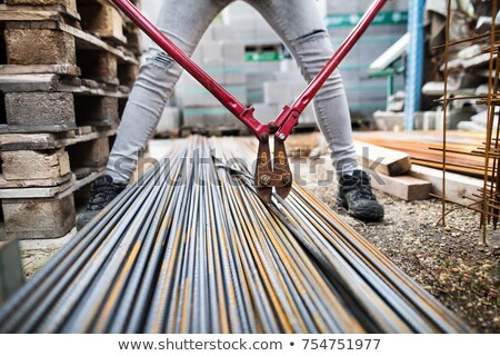 Woman with hard hat and bolt-cutters Stock photo © photography33