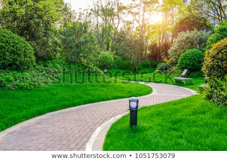 Curve Walkway in a Park Stock photo © pinkblue