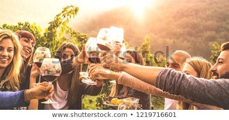 収穫 オーストリア ワイン 葉 夏 ストックフォト © tepic