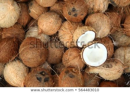 Kokosnoot schelpen abstract Stockfoto © rhamm