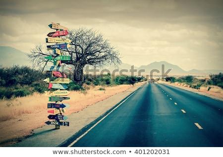 World_directions Stock photo © romvo