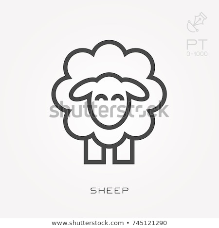 Icon sheep Stock photo © zzve
