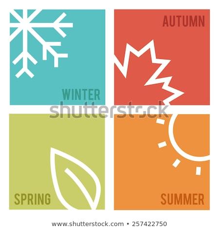 Carte fleur printemps design fruits Photo stock © carodi