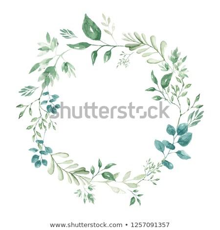 natuurlijke · groene · bladeren · naadloos · natuur · achtergrond · plant - stockfoto © andromeda