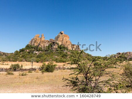 Matobo National Park Bulawao Zimbabwe Stock photo © backyardproductions