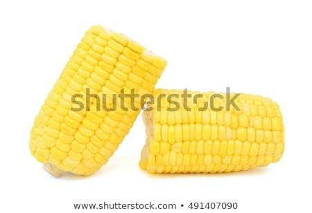 corn cob in half stock photo © stevanovicigor