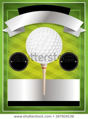 perfect golf flyer template stock photo © rioillustrator