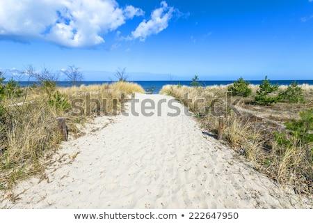 砂の · パス · ビーチ · バルト海 · 水 · 風景 - ストックフォト © meinzahn
