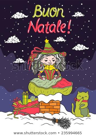 魔女 · 月光 · 実例 · 女性 · 面白い · クリスマス - ストックフォト © adrenalina