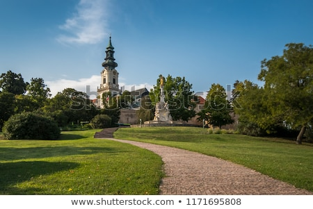 the plague column and castle in nitra slovakia stock photo © phbcz