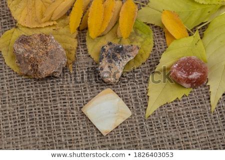 Mineral piedra blanco resumen luz fondo Foto stock © pixelman