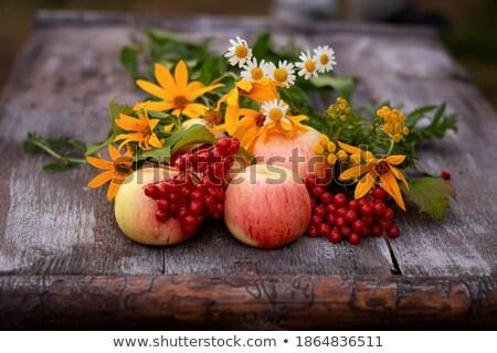 Rowan and apples on vintage wooden boards Stock photo © Valeriy