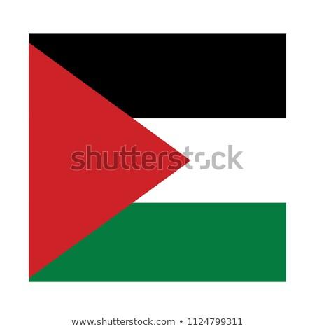 Square icon with flag of palestinian territory Stock photo © MikhailMishchenko