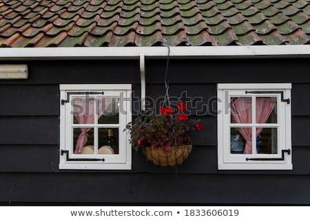 Open · venster · geïsoleerd · houten · frame · glas · vector - stockfoto © bluering