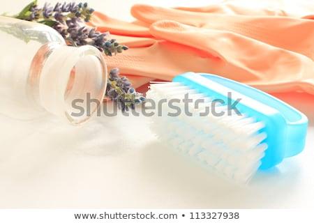 natuurlijke · schoonmaken · tools · citroen · natrium · huis - stockfoto © mady70
