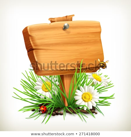Wooden signs with plant and bug Stock photo © bluering