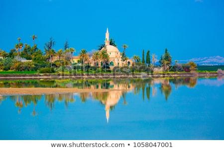 View of the Salt Lake in Larnaca, Cyprus Stock photo © Kirill_M