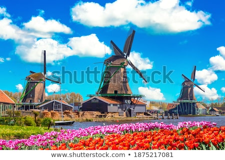typical classical vintage mill Stock photo © meinzahn