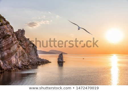 View from the mountain to a seaside resort in the Crimea Stock photo © Kotenko