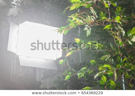 professionnels · matériel · d'éclairage · photo · vidéo · production · sombre - photo stock © stevanovicigor
