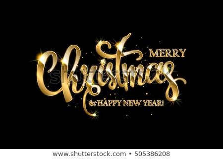 Alegre natal caligrafia texto cartão Foto stock © orensila