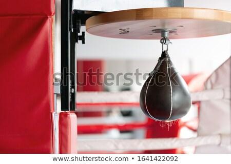 Prędkości boks piłka fitness studio wiszący Zdjęcia stock © wavebreak_media