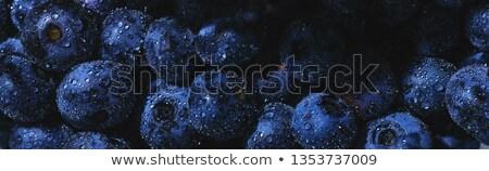 áfonya gyümölcs levelek fehér természetes keret Stock fotó © odina222