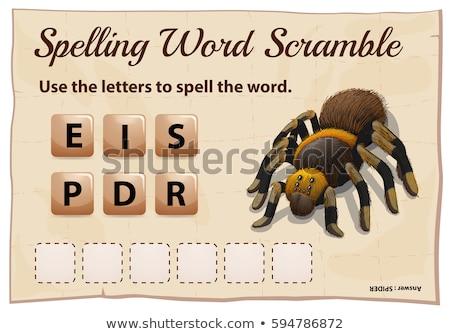 Ortografía palabra juego arana ilustración escuela Foto stock © colematt