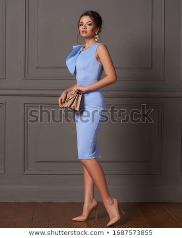 French style brunette lady in fashionable dress. Сток-фото © NeonShot
