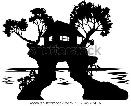Cabaña aislado isla ilustración árbol edificio Foto stock © colematt