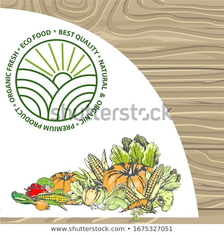 Bio comida orgânico ingredientes abóbora logotipo Foto stock © robuart